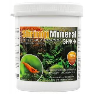 SaltyShrimp Bee Shrimp Mineral GH/KH+ sale per acquari con caridine 750 grammi
