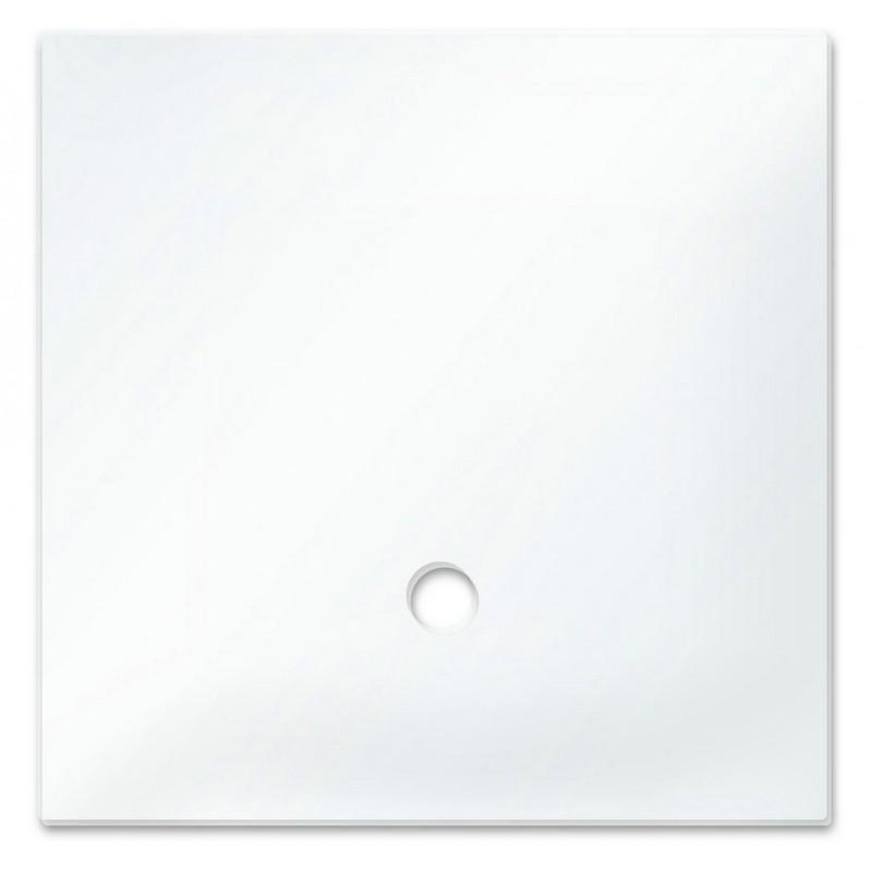 Dennerle 5893 Vetro copertura acquario DE NANO CUBE 10 L
