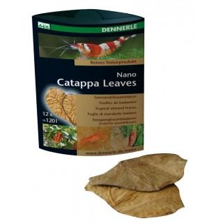 Dennerle 5916 Nano Catappa Leaves Foglie di mandorlo indiano per acquario