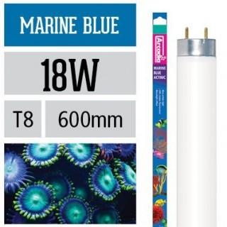 Arcadia Neon Marine Blue T8 18W luce per acquario marino esalta i coralli - FMB18