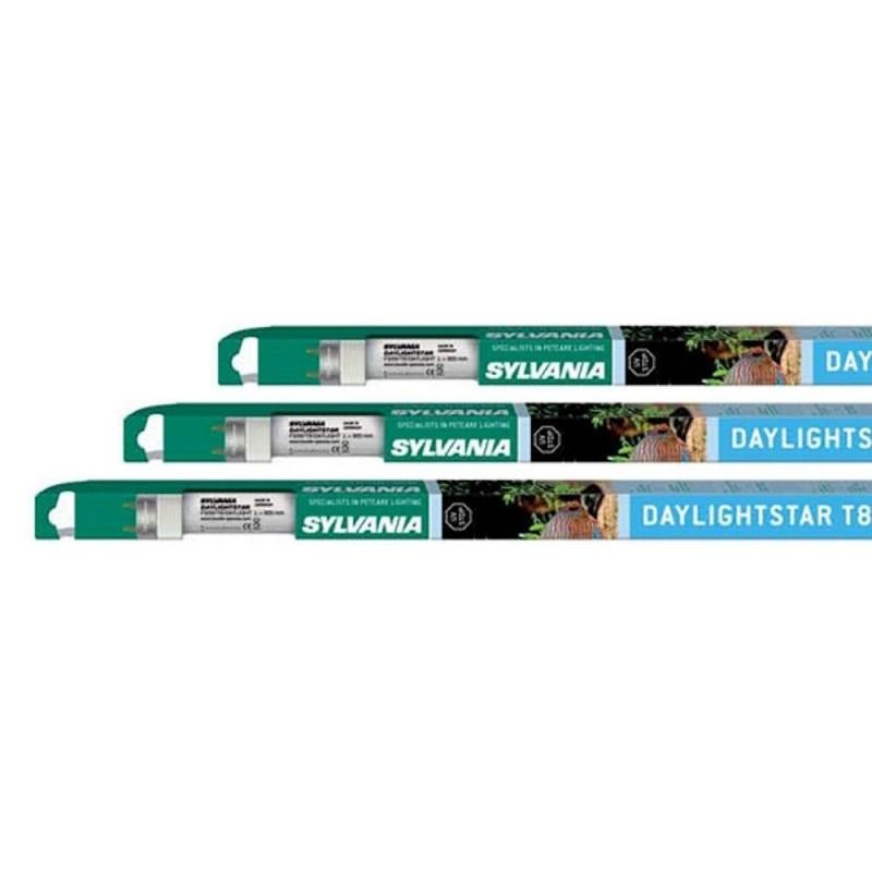 Sylvania Neon Daylightstar T8 36W 5000K 1200mm con pellicola antialghe per acquari con piante
