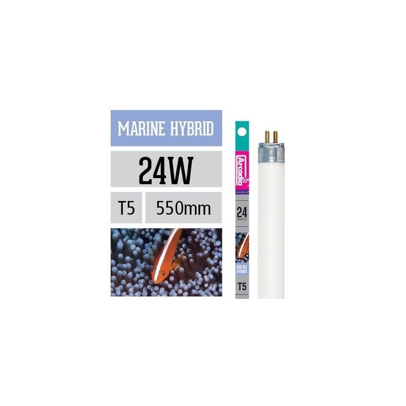 Arcadia Neon Marine Hybrid T5 24W 550mm luce per acquario marino esalta blu e viola nei coralli - FMH24T5