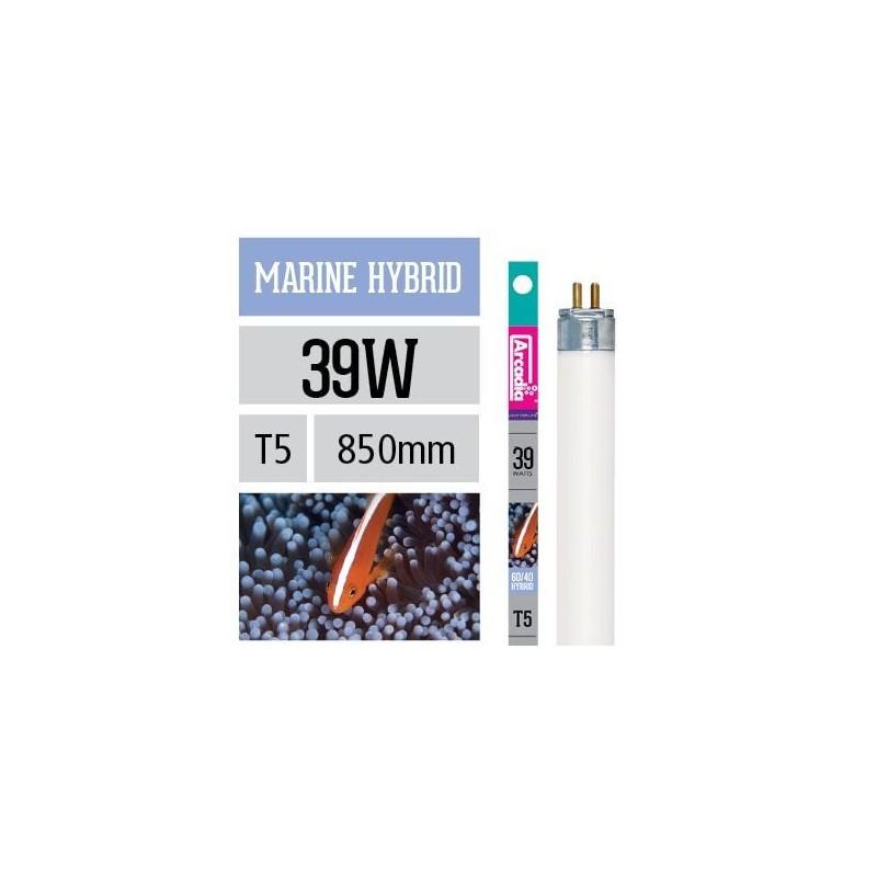 Arcadia Neon Marine Hybrid T5 39W 850mm luce per acquario marino esalta blu e viola nei coralli - FMH39T5