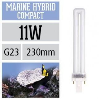 Arcadia Lampada Marine Hybrid Compact PL 11W G23 luce per acquario marino esalta blu e viola nei coralli - FMHC11