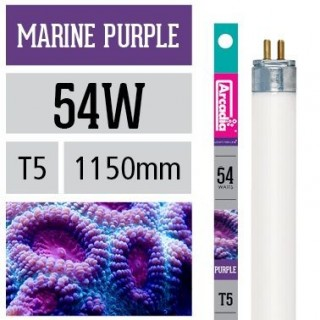 Arcadia Neon Marine Purple T5 54W 1150mm luce per acquario marino favorisce la crescita dei coralli - FMPU54T5