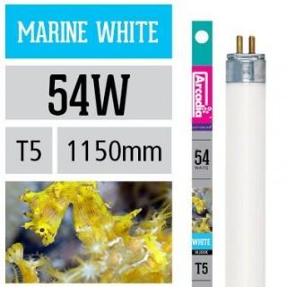 Arcadia Neon Marine White 14000K T5 54W 1150mm luce per acquario marino simula ambiente di barriera - FMW14K54