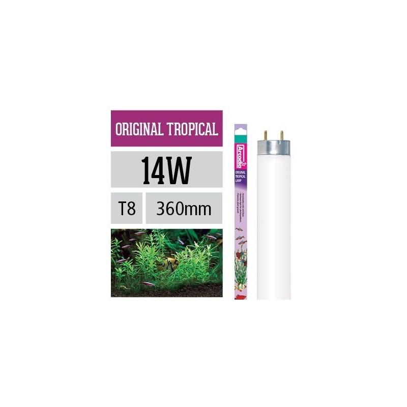 Arcadia Neon Original Tropical T8 14W luce ottimale per la fotosintesi delle piante in acquario - FO14