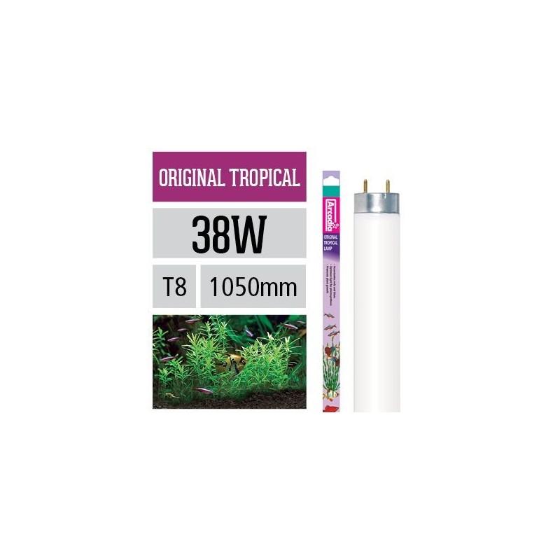 Arcadia Neon Original Tropical T8 38W luce ottimale per la fotosintesi delle piante in acquario - FO38