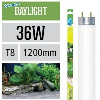 Arcadia Neon Classica Natural Daylight T8 36W luce brillante per piante d'acquario - FX36