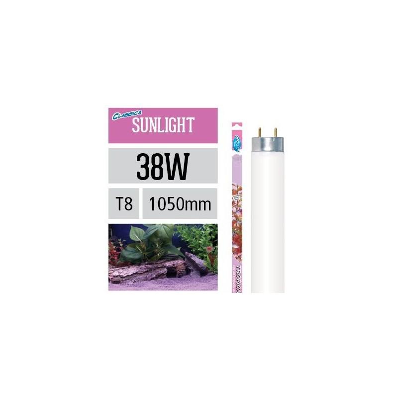 Arcadia Neon Classica Tropical Sunlight T8 38W luce per piante d'acquario evidenzia rosso e blu - FY38