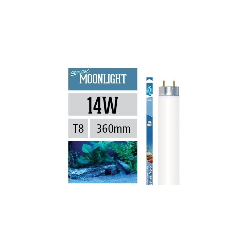 Arcadia Neon Classica Ocean Moonlight T8 14W luce lunare per acquario marino - FZ14