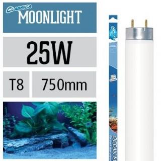 Arcadia Neon Classica Ocean Moonlight T8 25W luce lunare per acquario marino - FZ25