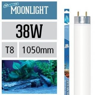 Arcadia Neon Classica Ocean Moonlight T8 38W luce lunare per acquario marino - FZ38