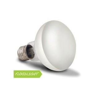 Arcadia Lampada Basking Solar Floodlight 50W luce a infrarossi riscaldante per rettili e terrari - SBF50