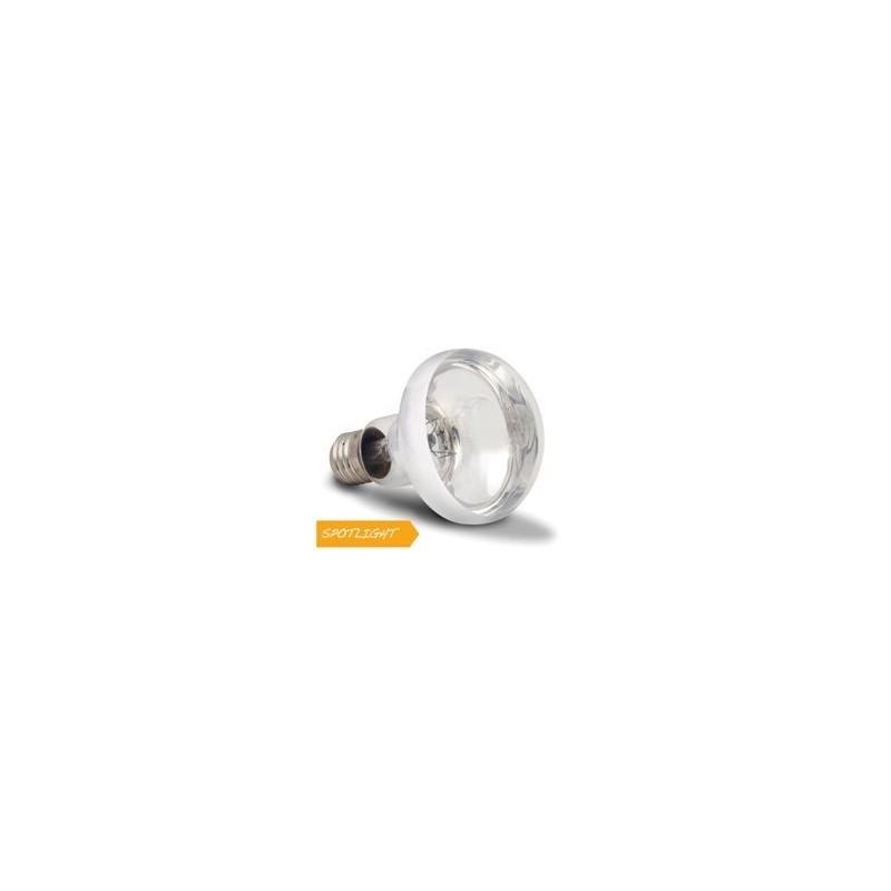 Arcadia Lampada Basking Solar Spotlight 100W luce a infrarossi riscaldante per rettili e terrari - SBS100