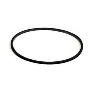 Eden Ricambio O-Ring per filtro esterno 511