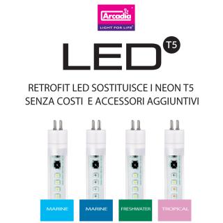Arcadia T5 LED Freshwater Pro 8000K migliora la colorazione verde delle piante in acquario