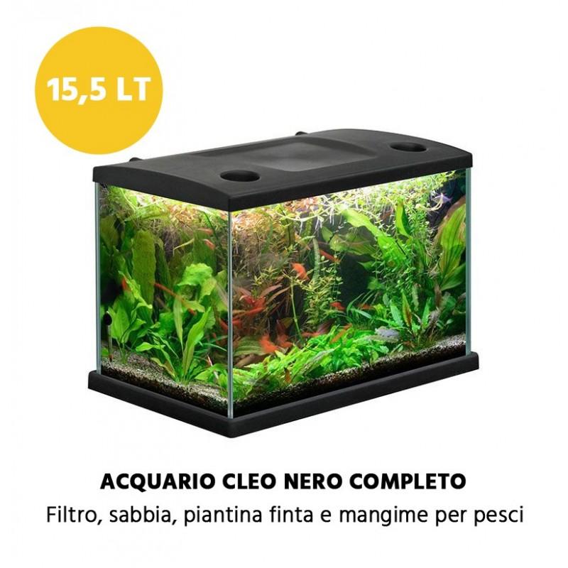 Vasca per pesci da giardino acquario problema con discus for Laghetto tartarughe inverno