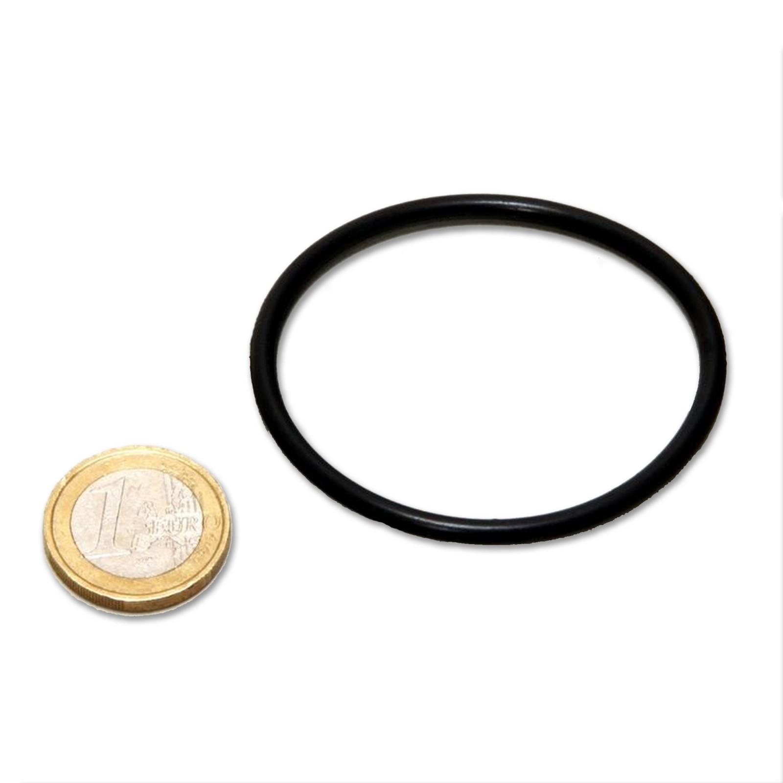 JBL AQ O-ring (tappo) UV-C 5,9,11,18,36W