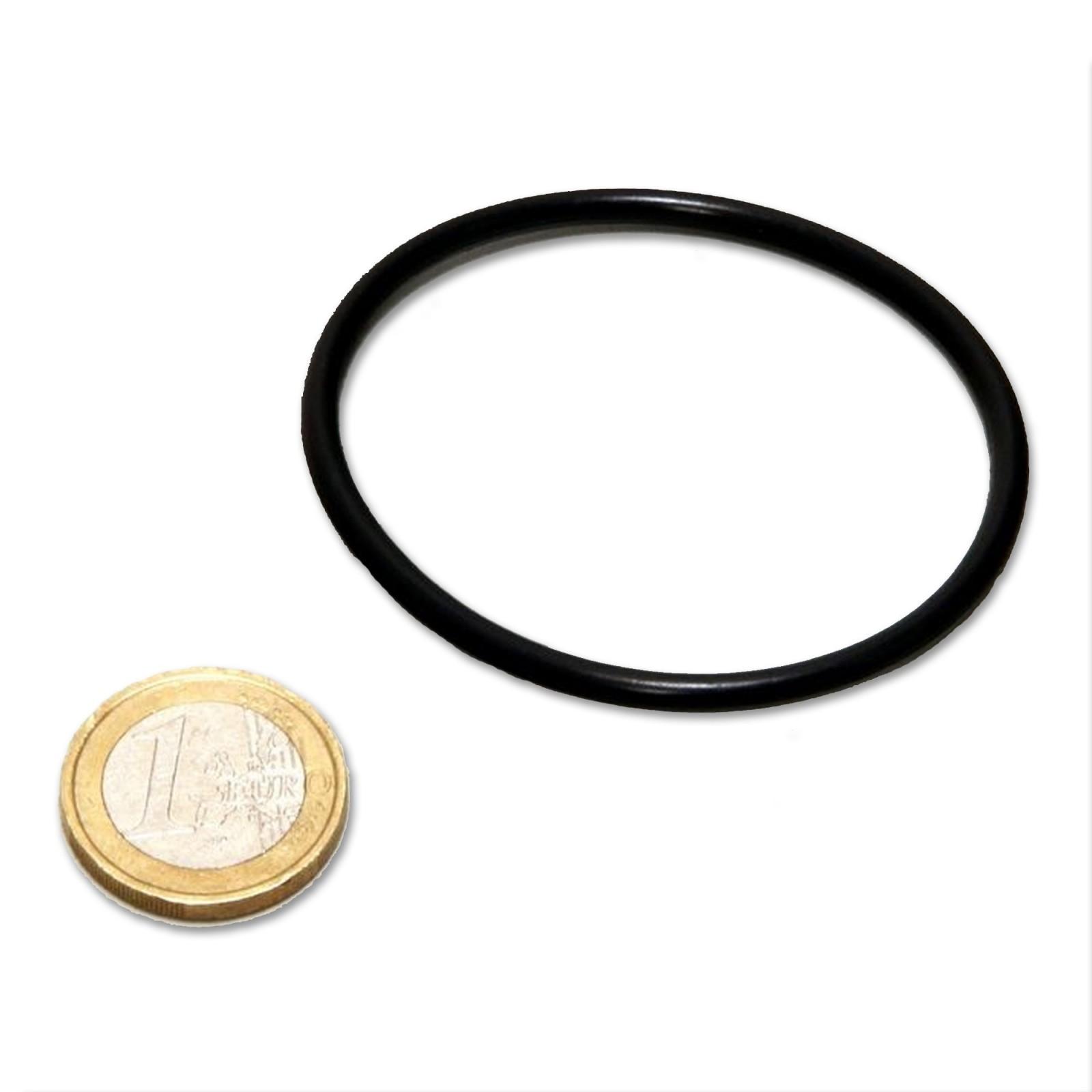 JBL AQ O-ring per custodia (interno) UV-C 5,9,11W