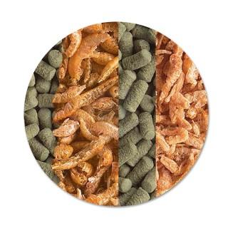 Tetra ReptoMin Menu 250 ml Mangime Mix per tutte le tartarughe alimentazione completa