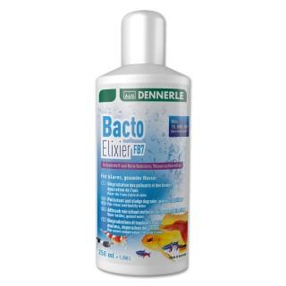 Dennerle Bacto Elixier FB7 Batteri Attivatori per acquario