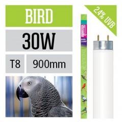 Arcadia Neon Bird Lamp T8 luce per uccelli simula effetto del sole 30 W