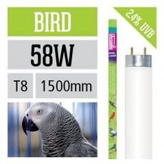 Arcadia Neon Bird Lamp T8 luce per uccelli simula effetto del sole 58 W