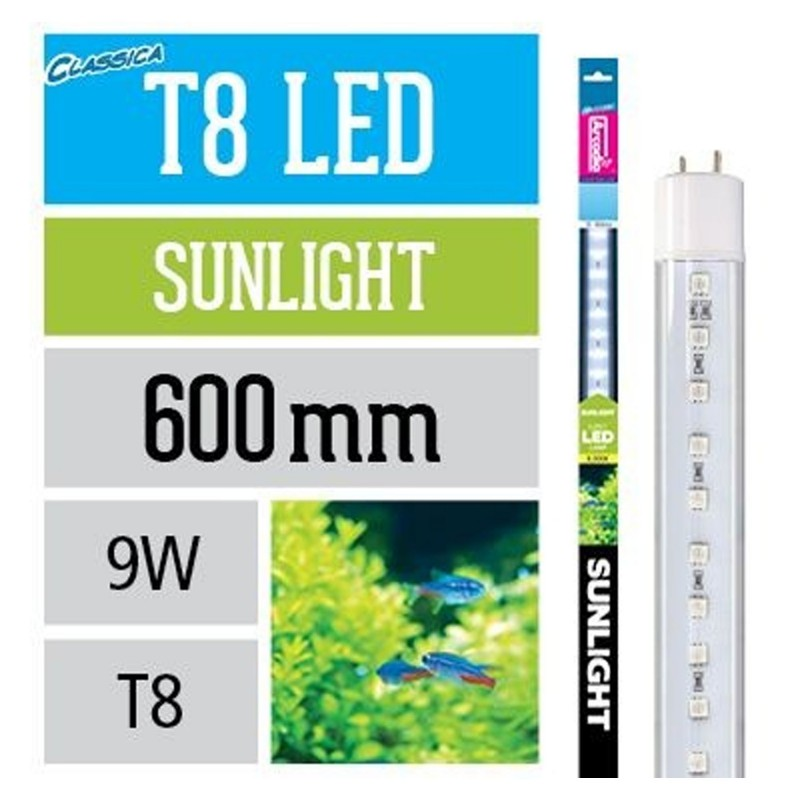 Arcadia Classica Sunlight T8 LED neon a led per acquario 9W 8000K
