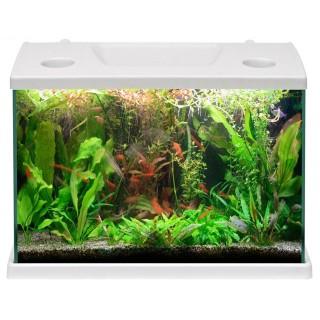 Acquario pesci rossi completo MTB Cleo 15 litri con plafoniera a LED