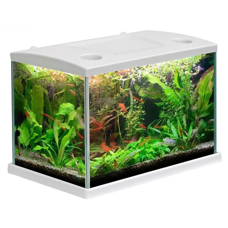 Mtb acquari cleo acquario accessoriato 15 5 l bianco con for Sabbia per acquario pesci rossi
