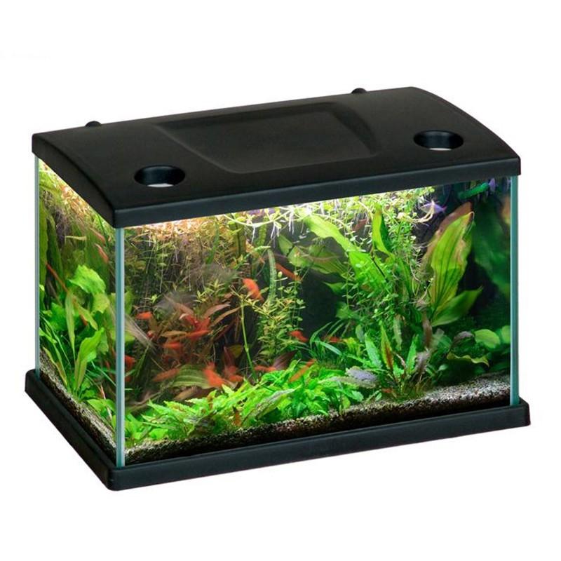 Mtb acquari cleo acquario accessoriato 15 5 l nero con for Sabbia per acquario pesci rossi
