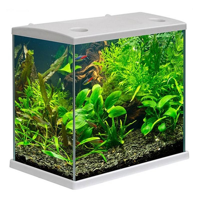 MTB Acquari Cleo Plus Acquario accessoriato 22.5 L Bianco con filtro sabbia e mangime per pesci