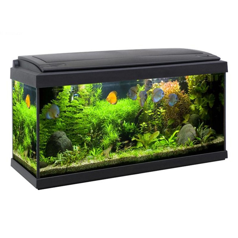 MTB Acquari Milo 80 LED 9 w Acquario accessoriato 93 L Nero