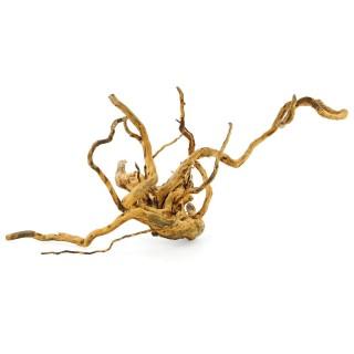 Legno Red Wood radice per acquari e terrari