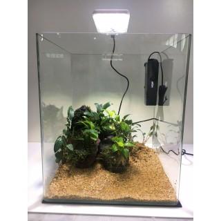Allestimento per acquario 30 litri