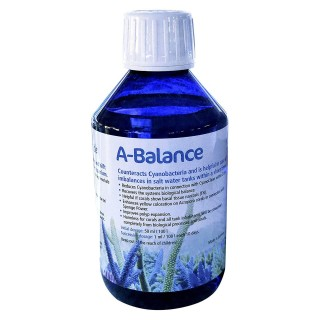 Korallen Zucht Pohl`s A-Balance