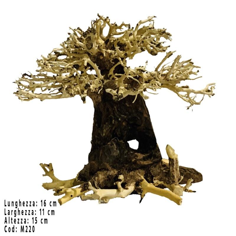 Bonsai albero per acquario Wood M220