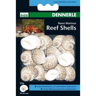 Dennerle 5634 Nano Marinus Reef Shells gusci di chiocciola decorativi