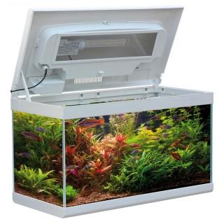 MTB Acquari Aloha 60 LED 6 w Acquario accessoriato 57L Bianco supporto